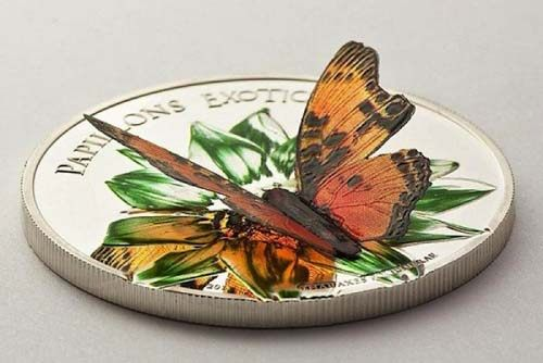 Butterfly Wings Go Beyond Coins