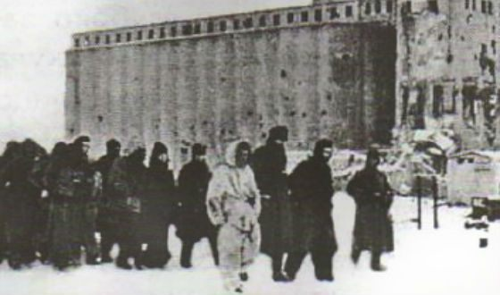 Captured German soldiers in Stalingrad