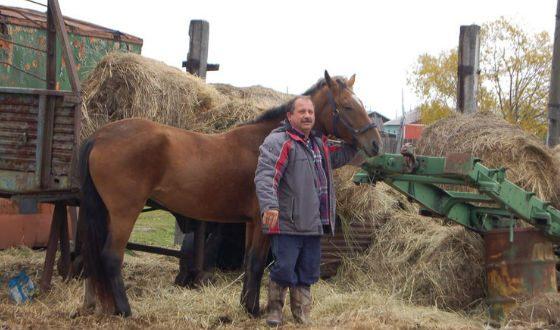 Камчатский депутат пересел на коня в знак протеста