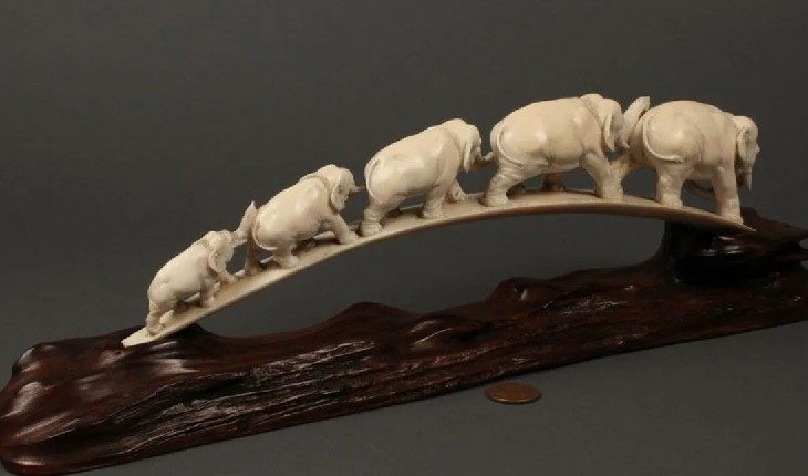 Жители Литвы не обрадуются изделиям из слоновой кости