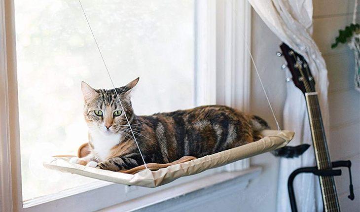 10 крутых подарков для кошек и их владельцев