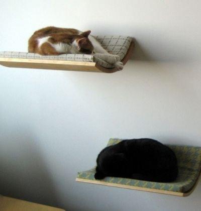 Любителям животных непременно по душе будут специальные полки для котов