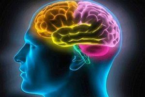 Музыка Моцарта активирует умственные способности человека