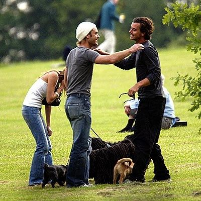 Собака бывает кусачей, только от жизни собачьей