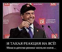 Медведев на демотиваторах - излюбленный персонаж