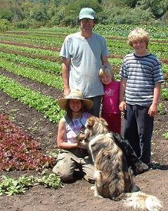 Семейная ферма - возможность развития