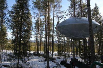 Шведские домики на деревьях могут выглядеть по-разному