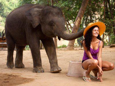 Таиландский слон устроил перед Мариной Бережной целое представление