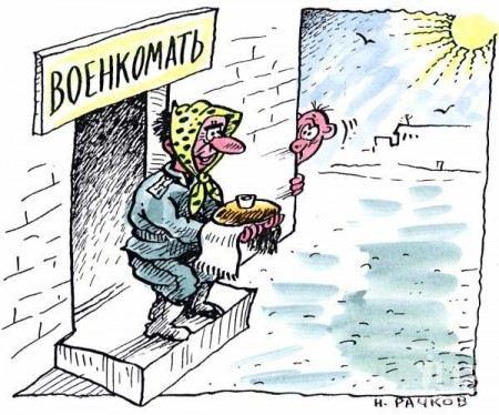 Совет Федерации предлагает призывникам самим ходить за повестками