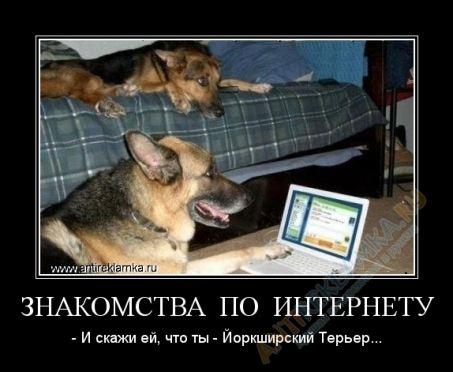 По Интернету можно найти и друга, и любовь