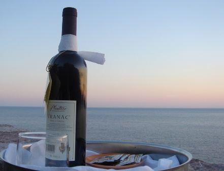 Черногория также славится виноделием