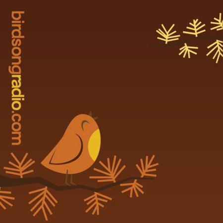 Birdsongradio