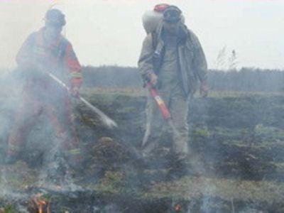 Сотрудники МЧС пытаются погасить возгорание