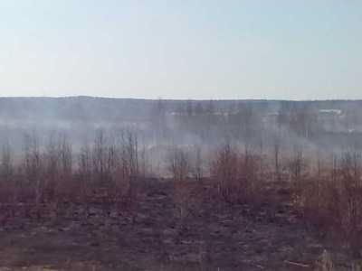 Торф горит на территории 1 га