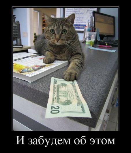 Деньги решают все!