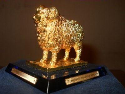 Овцы получили высокие награды