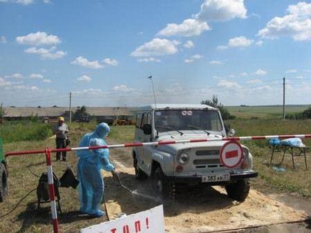 В карантинную зону попали населенные пункты в радиусе 150 км, в том числе Тверь.