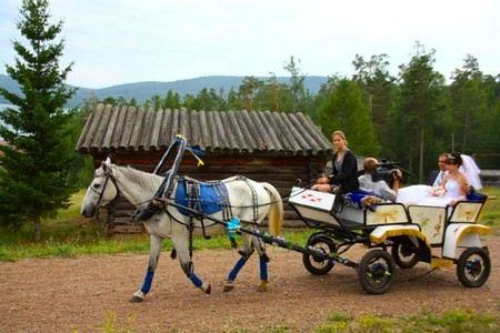 О том, состоялась ли свадьба в селе Кизильское, следственный комитет не сообщает