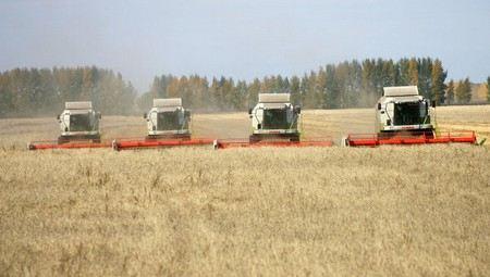 «Урожай 2012 в России под угрозой»