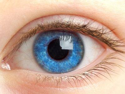 Человеческий глаз вдохновил на создание принтера