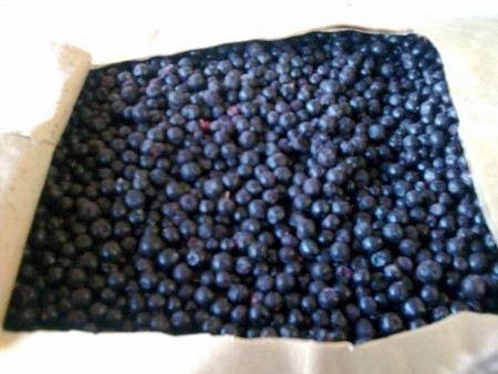 радиоактивные ягоды изъяли из продажи в подмосковном Солнечногорске