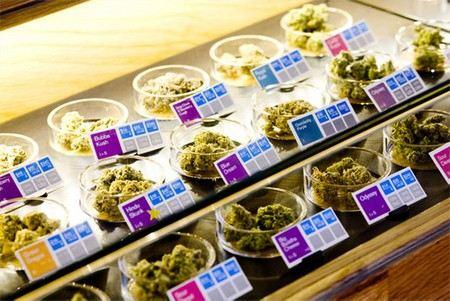 В течение 30 дней Лос-Анджелесе закроют точки торговли марихуаной