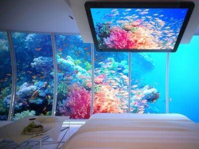 Подводный мир за окном