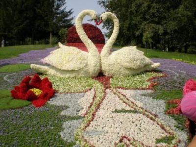 Искусство флористов поражает