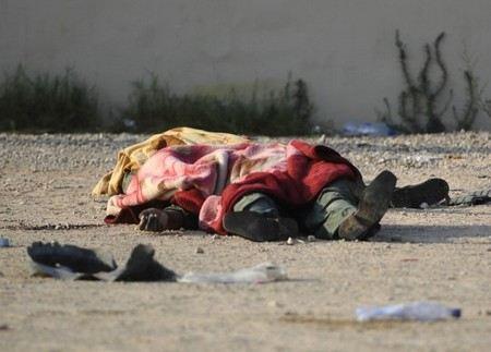 В городе Луга Ленинградской области сотрудники морга сложили тела людей в кустах