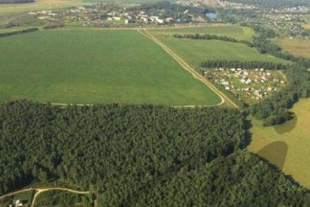 В лесах Подмосковья появятся зоны отдыха