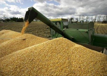 Владимир Путин заявил, что экспорт зерна из России к 2020 году увеличится до 40 млн тонн в год.