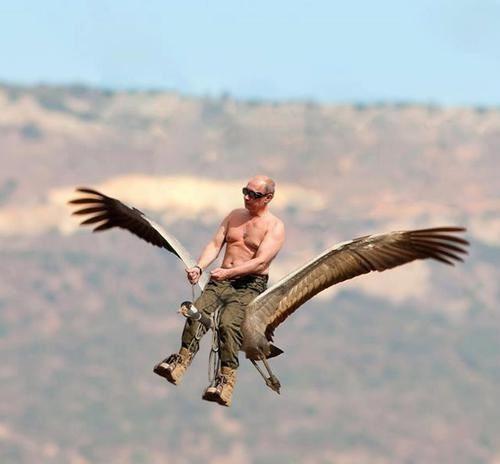 Фотожаба на полет президента
