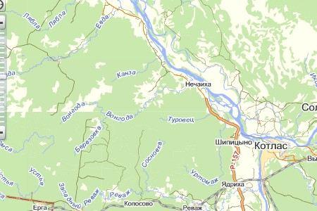 В Архангельской области расследуют смерть лесника от падения дерева.