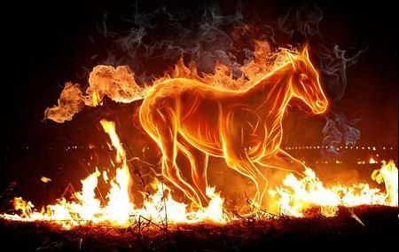 В Казахстане при пожаре погибли 29 лошадей.