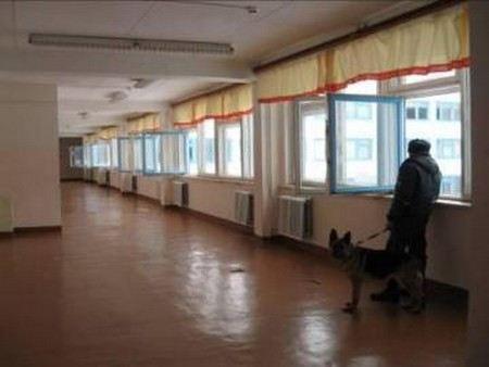 В городе Гдов Псковской области пришлось эвакуировать школу из-за распыления газового баллончика. Из-за ЧП в медикам обратились 50 детей.