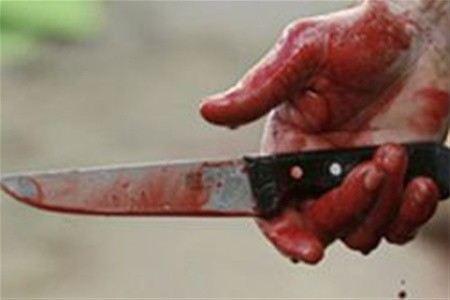 В Новосибирской области ребенка сначала зарезали, а потом отдали на съедение псам. Следствие насчитало 91 ножевое ранение