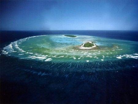 Карты Google пополнились изображениями подводного мира. Уже можно увидеть Большой Барьерный риф.