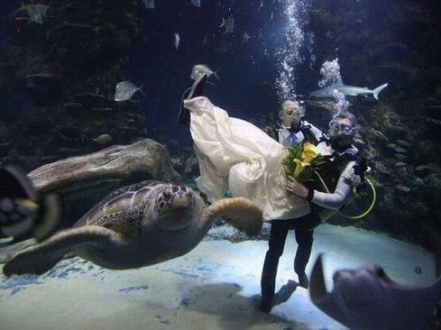 Свадебное торжество под водой для настоящих экстремалов