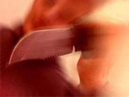 В Новгороде мать нанесла ножевые ранения своей дочери и порезалась сама.