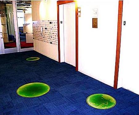 Интересно, когда в напольном покрытии делаются вставки из живой плитки, как, например, в офисе компании Google в городе Чикаго
