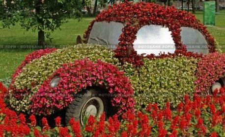 Цветочный автомобиль в парке Диво-остров в Петербурге