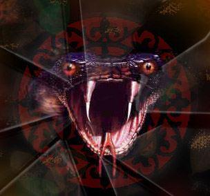 Год Змеи будет опасным