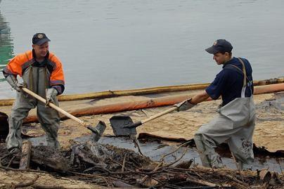 За год с Камчатки вывезли почти 60 тонн опасных отходов