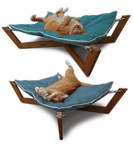 И кошке здесь удобно