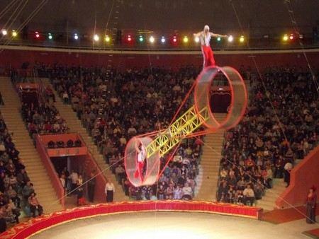 Из цирка на Фонтанке в реанимацию - с «Колеса смелости» рухнул акробат из Колумбии Хосе Гонзалес.
