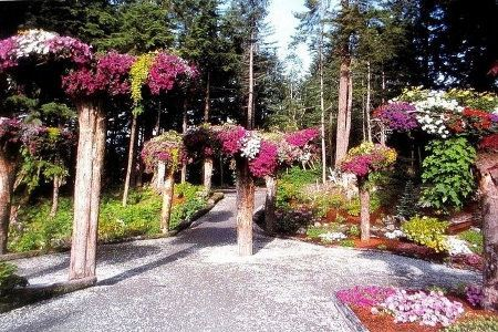 В ботаническом саду на аляске
