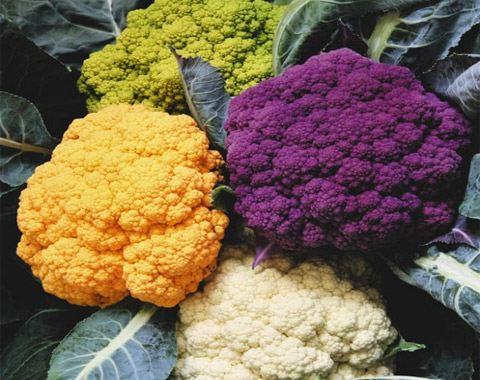 Цветная капуста быстро сжигает жиры, выводит из организма вредные токсины и шлаки.