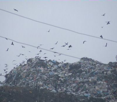 Промышленный мусор - проблема не только Подмосковья