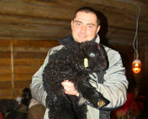 Александр Языков переехал в российскую глубинку ради разведения овец