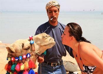 Египет все больше привлекает туристов